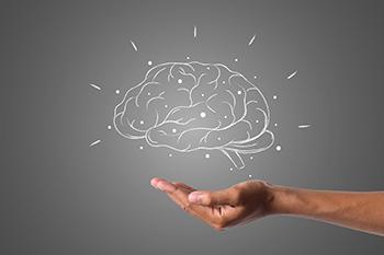 como funciona nuestro cerebro
