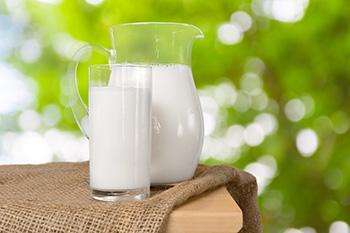 la leche y los lácteos, alimentos secundarios en el plato harvard