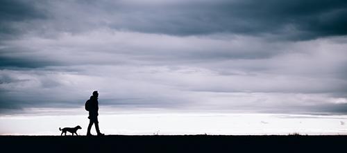 Un hombre y su perro paseando