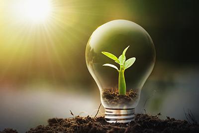 Tener aspiraciones y creatividad para solucionar la duda: que puedo hacer con mi vida