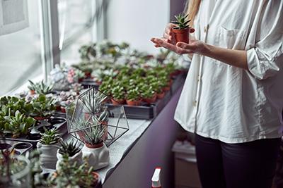 mujer cuidando una planta