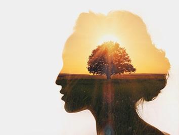 Mindset mentalidad de crecimiento